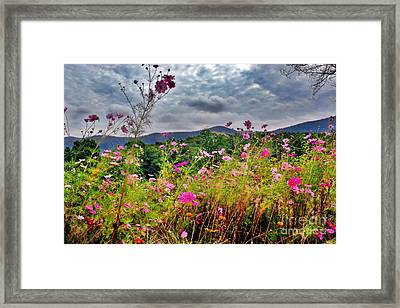 Tryon Peak Pastel Framed Print