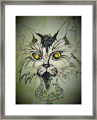 Tsimos Cat Framed Print