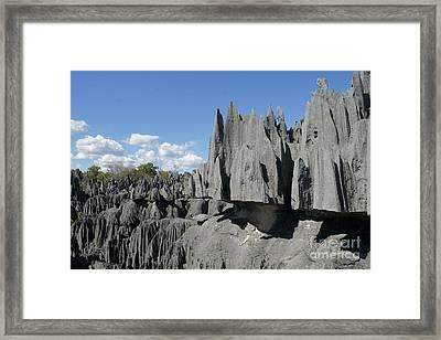 Tsingy De Bemaraha Madagascar 2 Framed Print by Rudi Prott