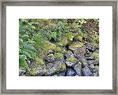 Tsongas Beauty Framed Print