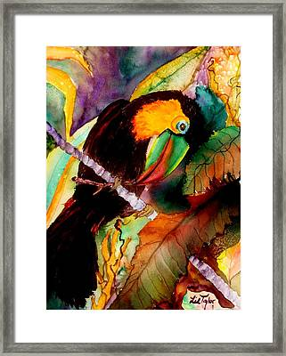 Tu Can Toucan Framed Print by Lil Taylor