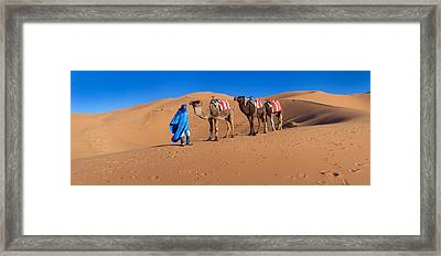 Tuareg Man Leading Camel Train Framed Print