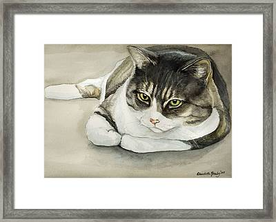 Tubby Framed Print by Charlotte Yealey