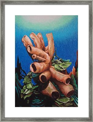 Tube Coral Framed Print