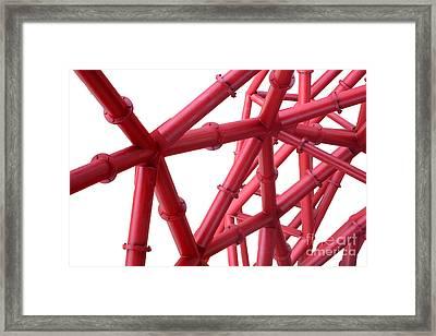 Tubes Framed Print by Roger Lighterness