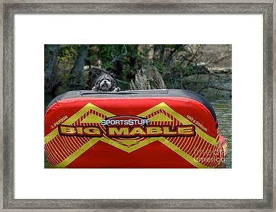Tubing Anyone??? Framed Print by M West