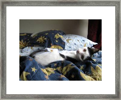 Framed Print featuring the photograph Tuck Me In by Wendy Coulson