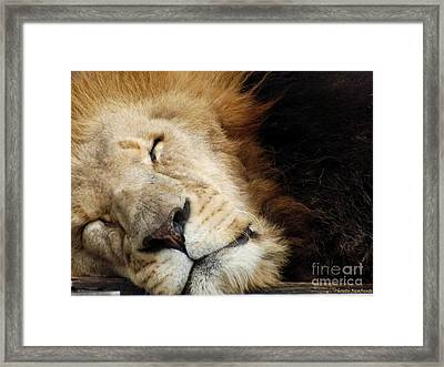 Tuckered Out Framed Print by Christy Ricafrente