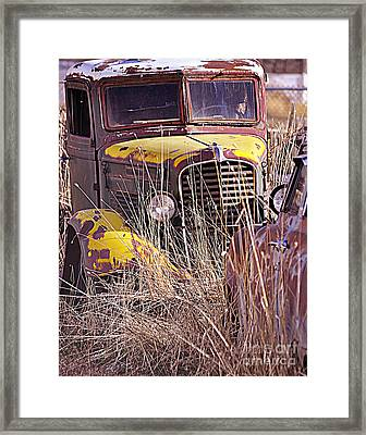 Tuckered Out  Framed Print by Juls Adams