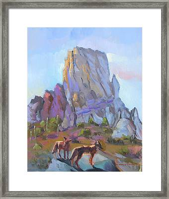 Tucson Butte With Two Coyotes Framed Print