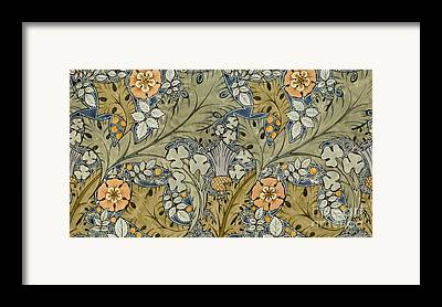 Colourful Flowers Framed Prints