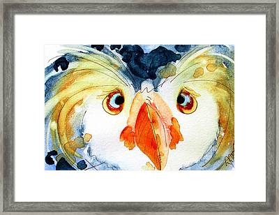 Tufted Puffin Framed Print by Dawn Derman