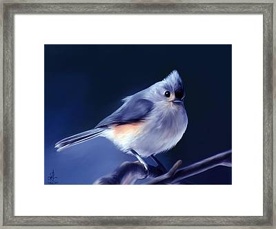 Tufty The Titmouse Framed Print by Pennie  McCracken