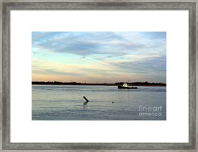 Framed Print featuring the photograph Tug Boat by David Jackson