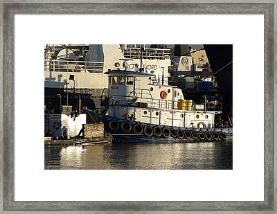 Framed Print featuring the photograph Tug by Erin Kohlenberg