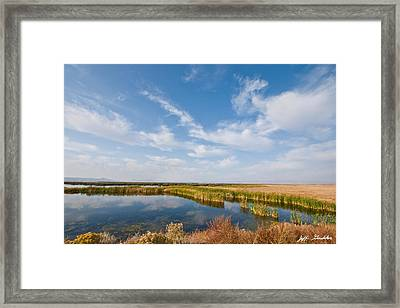 Framed Print featuring the photograph Tule Lake Marshland by Jeff Goulden