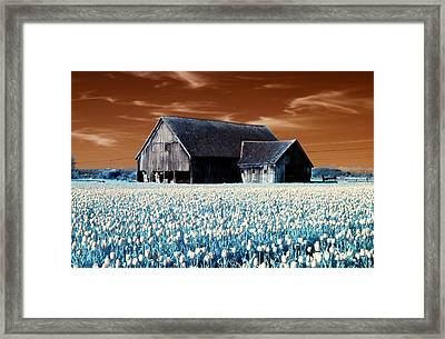Framed Print featuring the photograph Tulip Barn by Rebecca Parker