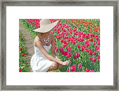 Tulip Beauty Framed Print by Maria Dryfhout