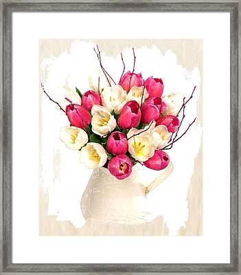 Tulip Blooms Framed Print by Debra  Miller