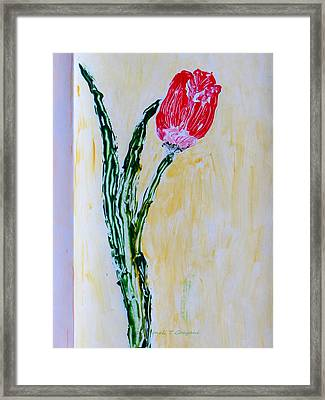 Tulip For You Framed Print by Sonali Gangane