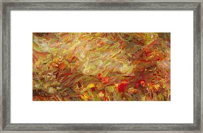 Tulip Garden Abstract Framed Print by Kenny Francis