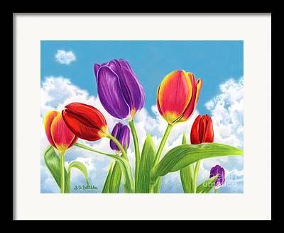 Pinks And Purple Petals Framed Prints