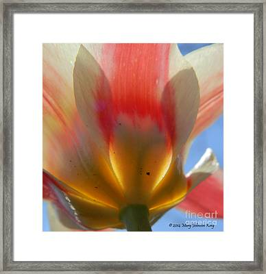 Tulip Heart Framed Print by Mary  King