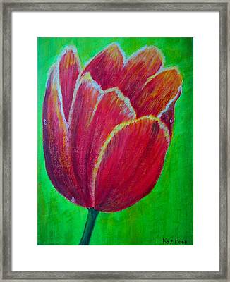 Tulip In Bloom Framed Print by Kat Poon