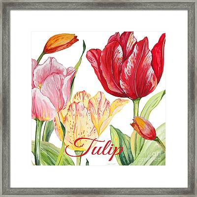 Tulip-jp2584 Framed Print by Jean Plout