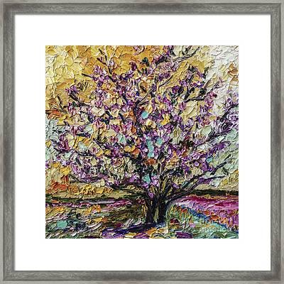 Tulip Magnolia Tree Framed Print