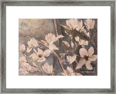 Tulip Magnolias Framed Print by Nancy Kane Chapman