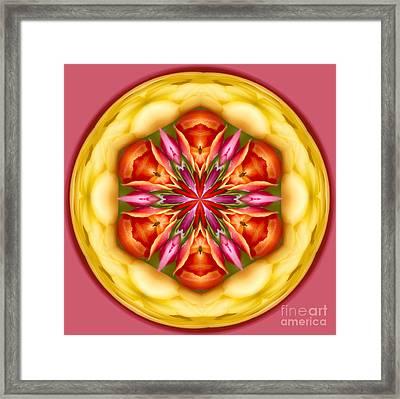 Tulip Orb Framed Print