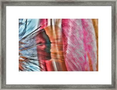 Tulip Painter Framed Print