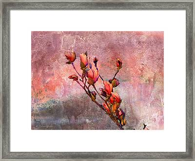 Tulip Tree Budding Framed Print by J Larry Walker