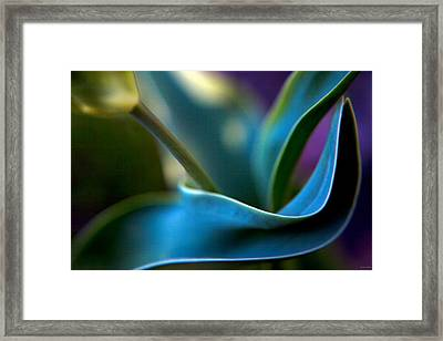 Tulip Unexpected Framed Print by Theresa Tahara