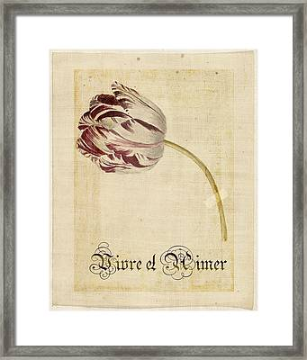 Tulip - Vivre Et Aimer S02t03tr Framed Print by Variance Collections