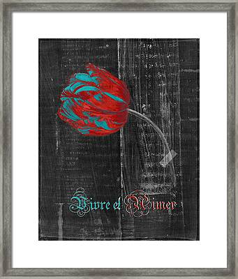 Tulip - Vivre Et Aimer S11ct04t Framed Print by Variance Collections