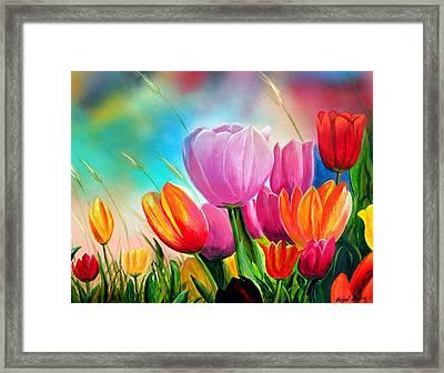Tulipa Festivity Framed Print by Angel Ortiz