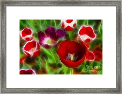 Tulips-6967-fractal Framed Print by Gary Gingrich Galleries