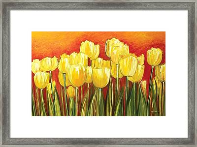 Tulips Framed Print by Ahmed Amir
