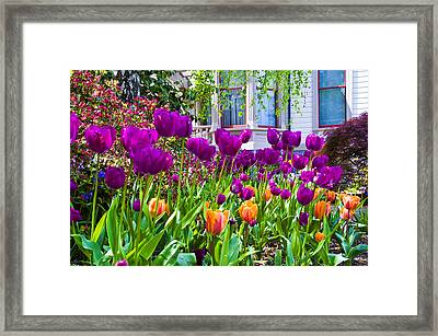 Tulips And Bush House Framed Print