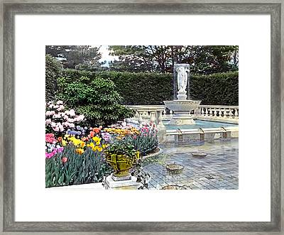 Tulips And Fountain Framed Print