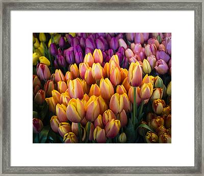 Tulips At The Market Framed Print