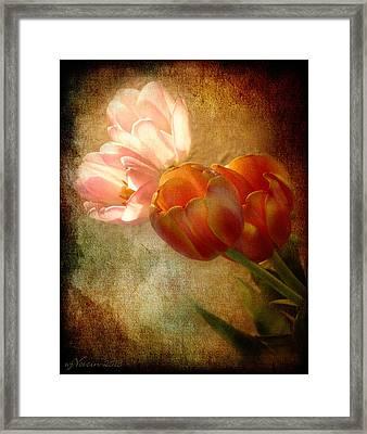 Tulips Framed Print by Bill Voizin