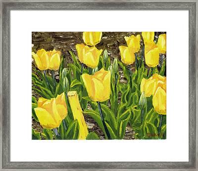 Tulips Framed Print by Blake Grigorian