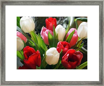 Framed Print featuring the photograph Tulips by Deborah Fay