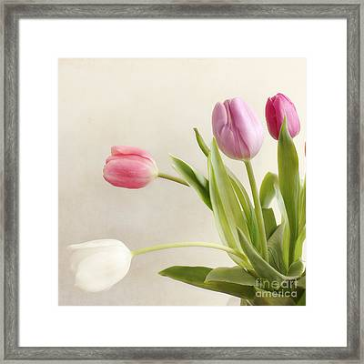 Tulips Framed Print by LHJB Photography