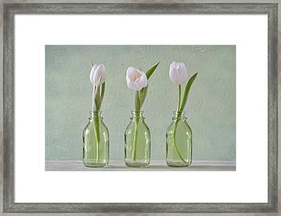 Tulips In A Bottle Framed Print by Steffen Gierok