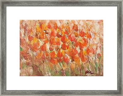 Tulips Framed Print by Jane  See