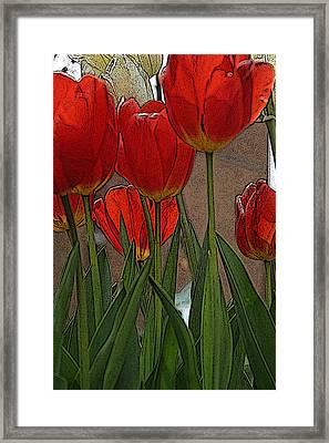 Tulips Framed Print by John Freidenberg